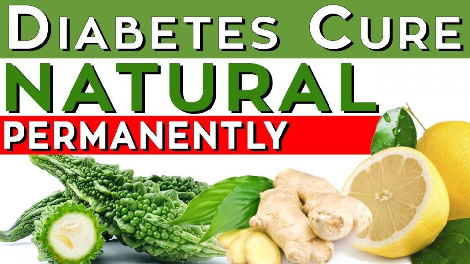 Halki Diabetes Remedy Recipes - Free FAQs Guide & PDF EBook Download