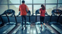 How To Slap Down A Gym Accessories Online